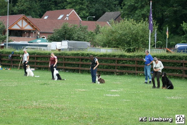 002 obedience cursus